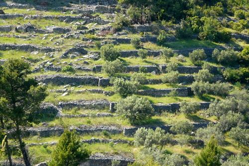 Stonehouses - korcula kamene kucice meje 05