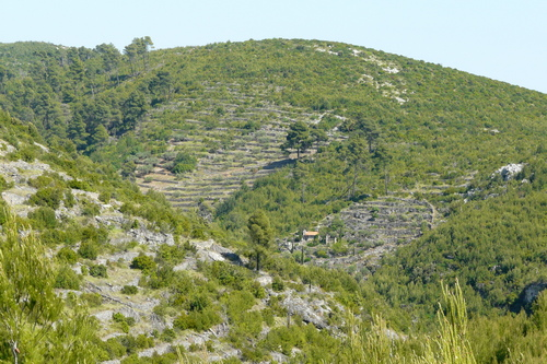 Stonehouses - korcula kamene kucice meje 06