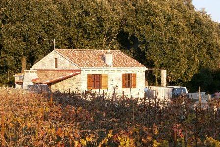 Kamena kuća i poljoprivredno zemljište - Žrnovo - birisice 008 448x300