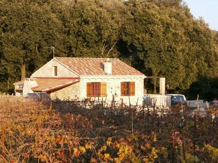 Kamena kuća i poljoprivredno zemljište - Žrnovo - birisice 008