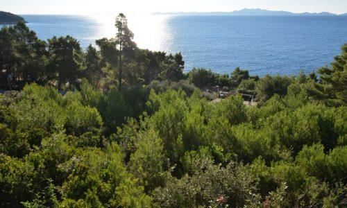 Građevinsko zemljište 50 metara od mora Vinačac - Korčula - gradjevinsko zemljiste vinacac 01 500x300