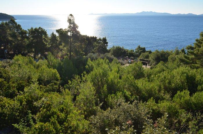 Građevinsko zemljište 50 metara od mora Vinačac - Korčula - gradjevinsko zemljiste vinacac 01