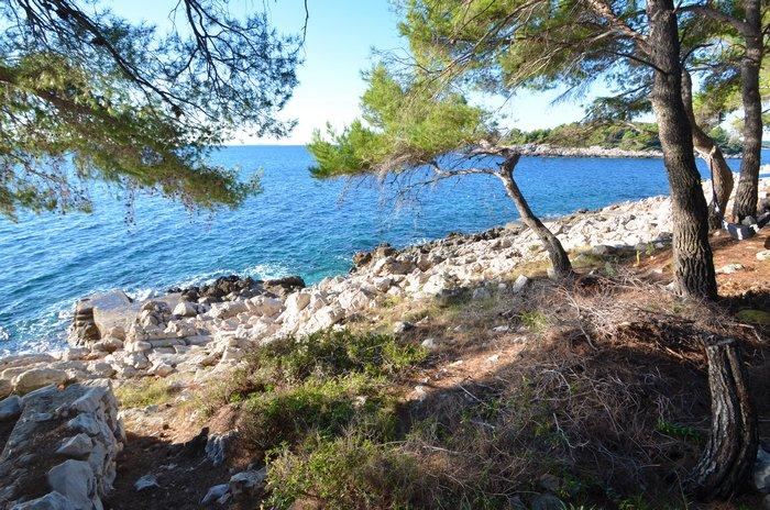 Građevinsko zemljište 50 metara od mora Vinačac - Korčula - gradjevinsko zemljiste vinacac 07