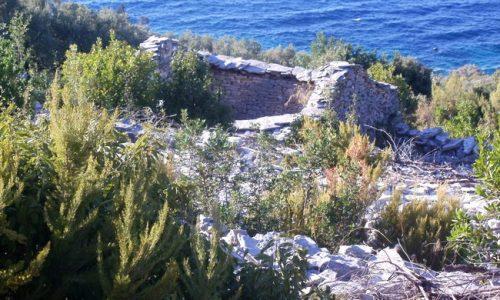 Agricultural Land and Stone House - Blaca, Prigradica - poljoprivredno zemljiste ivko vlatko 02 500x300