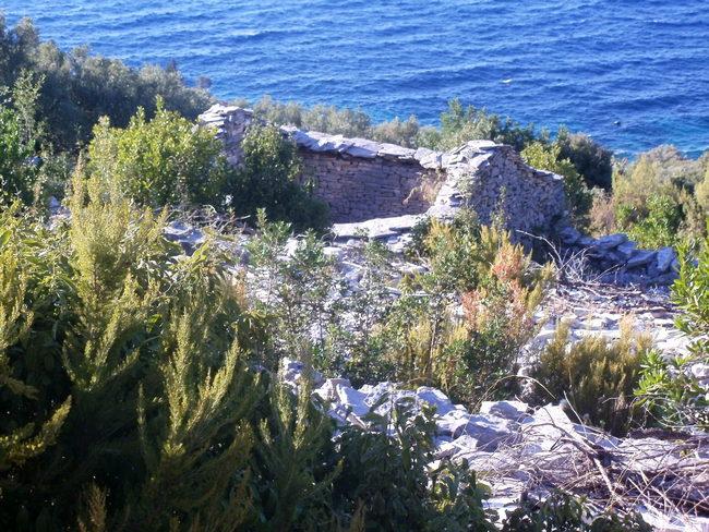 Poljoprivredno zemljište 170 m od mora - uvala Blaca - poljoprivredno zemljiste ivko vlatko 02